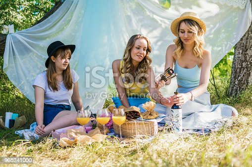 Group Of Girls Friends Making Picnic Outdoor Stock Photo & More Pictures of Adult