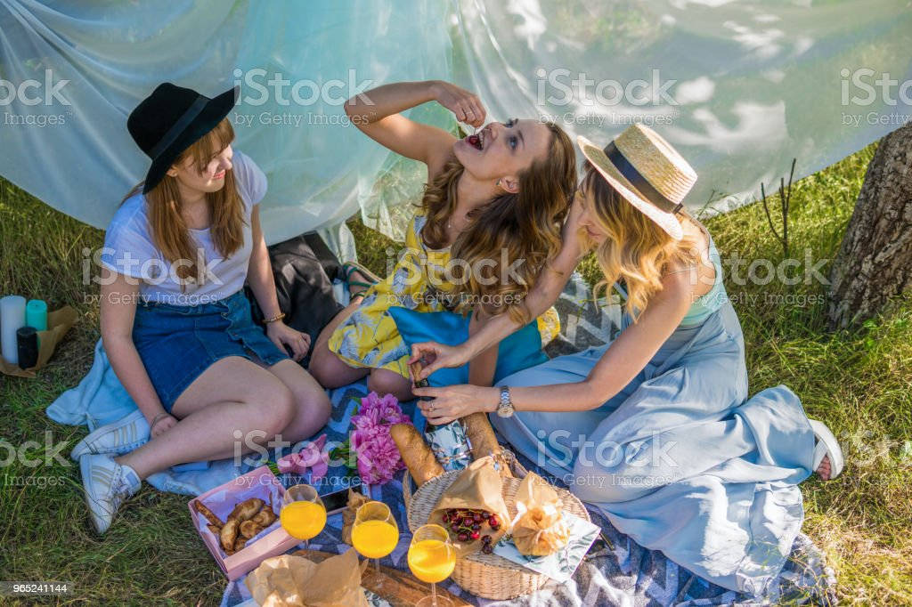 Group of girls friends making picnic outdoor zbiór zdjęć royalty-free