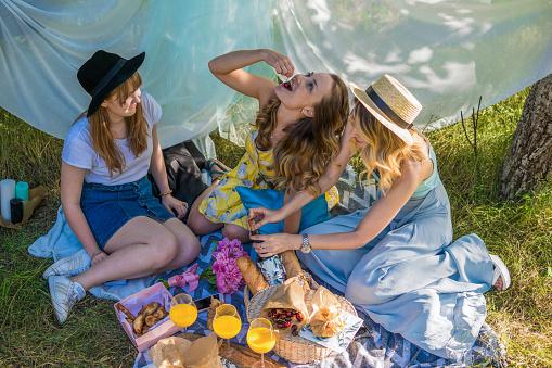 Group Of Girls Friends Making Picnic Outdoor - zdjęcia stockowe i więcej obrazów Dorosły