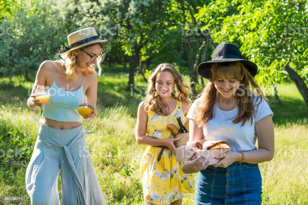 Group of girls friends making picnic outdoor. They have fun zbiór zdjęć royalty-free