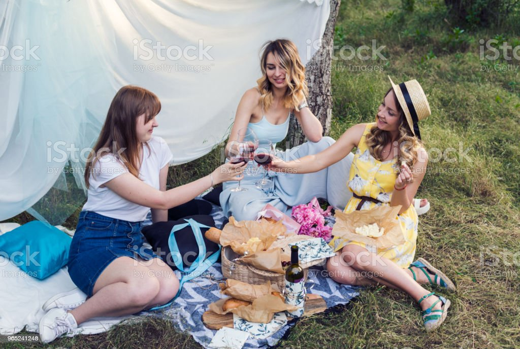 Group of girls friends making picnic outdoor. They have fun royalty-free stock photo