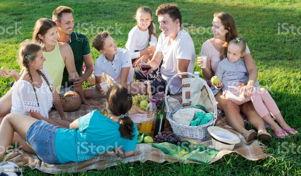 Group of glad people with kids enjoying picnic stock photo
