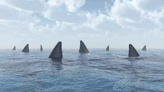 Computer generated 3D illustration with a group of great white sharks