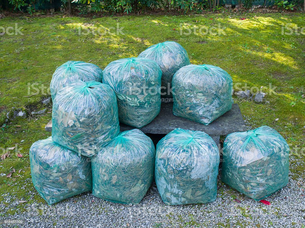 Group of Green clear bags used for garden waste recycling stock photo