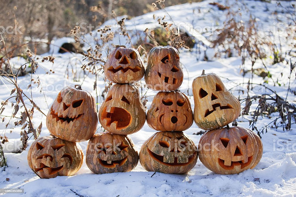 Group of Halloween pumpkin Group of Halloween pumpkin on the snow Agriculture Stock Photo