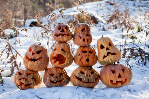 Group Of Halloween Pumpkin Stock Photo - Download Image Now