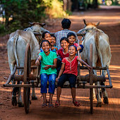 Group of happy Cambodian children riding ox cart in village near Siem Reap, Cambodia