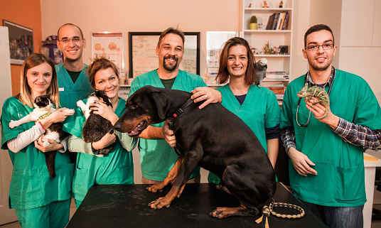 Large group of happy veterinarians standing in animal hospital with different pets and looking at the camera.