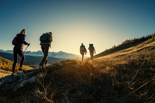 Group of hikers walks in mountains at sunset