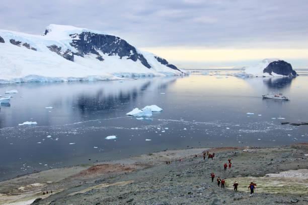 Grupo de excursionistas con gentoo pingüinos alrededor, Península Antártica - foto de stock