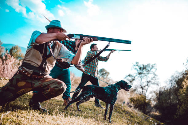 Group Of Hunters Aiming At Prey, Ready To Shoot Group Of Hunters Aiming At Prey, Ready To Shoot bird hunting stock pictures, royalty-free photos & images