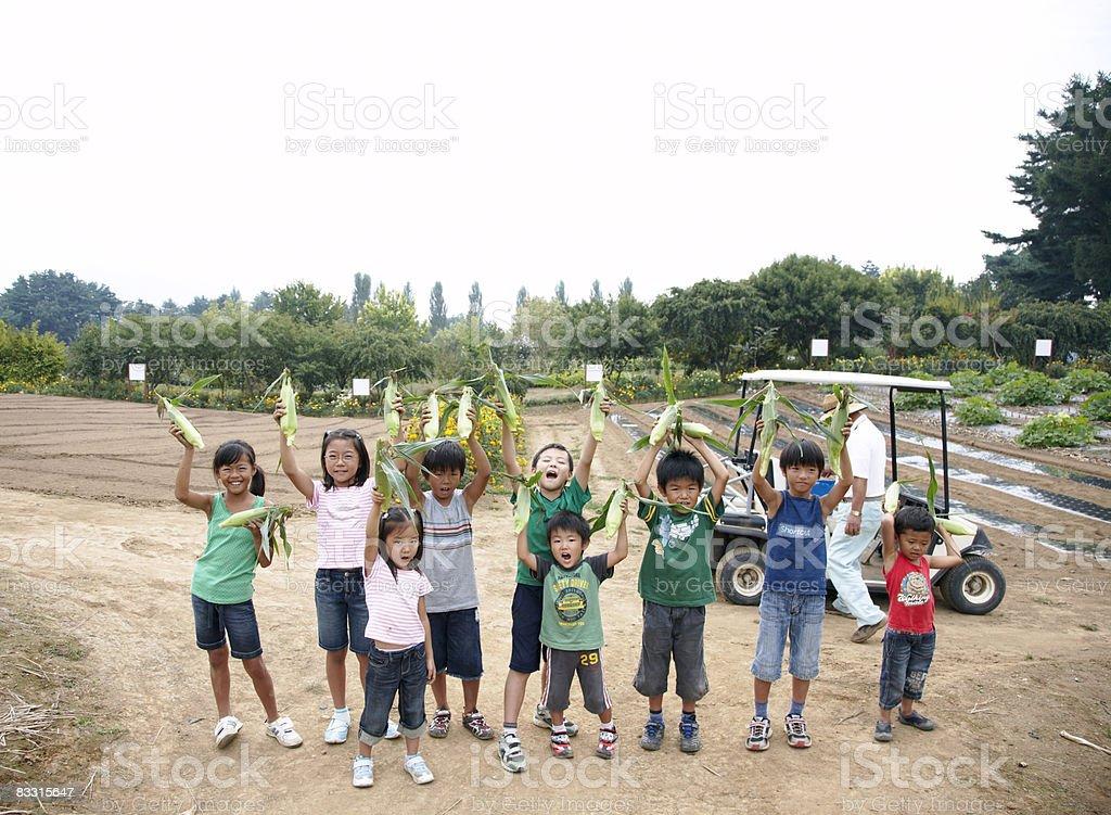 日本の子供のグループを持つトウモロコシ ロイヤリティフリーストックフォト