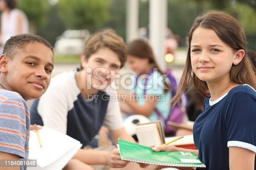 476098743 istock photo Group of junior high school children, teenage friends studying on campus. 1154081648