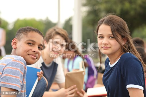 476098743 istock photo Group of junior high school children, teenage friends studying on campus. 1160232395