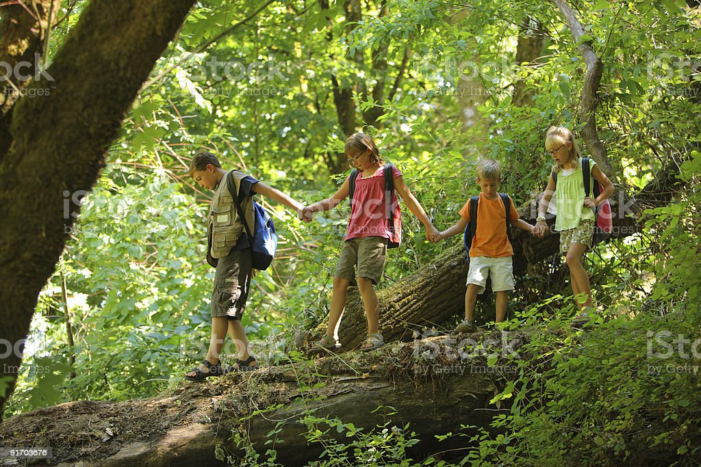 Group of kids in forest walking over log stock photo
