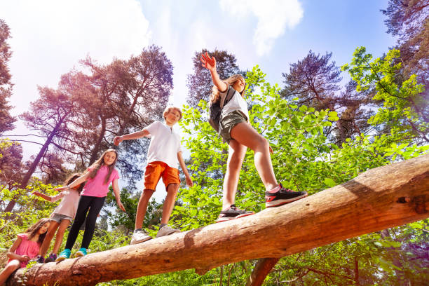 group of kids walk over big log in the forest - camping imagens e fotografias de stock