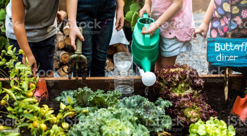 Groupe de maternelle enfants apprentissage jardinage à l'extérieur - Photo