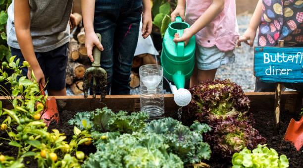 組的幼稚園的孩子學習戶外園藝 - 園藝 個照片及圖片檔
