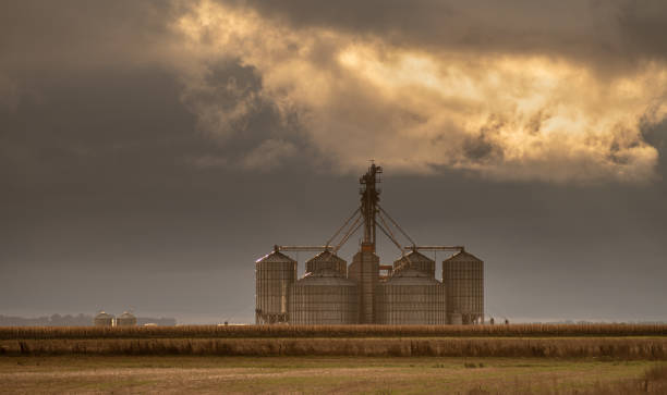 Group of large silos stock photo