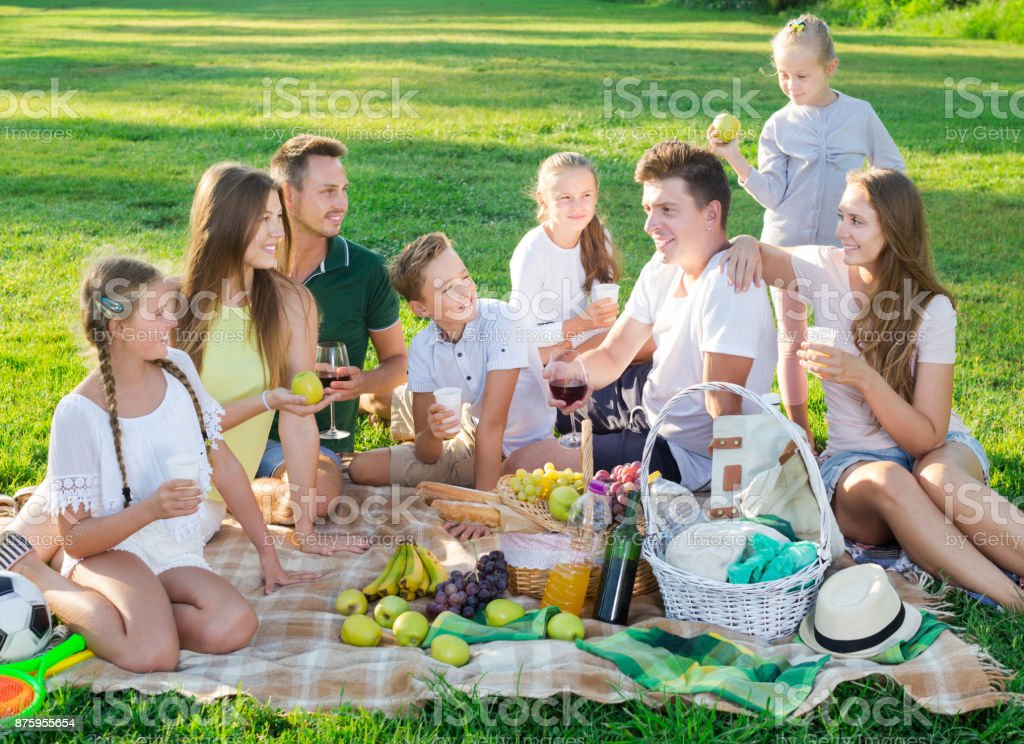 Group of laughing people enjoying picnic stock photo