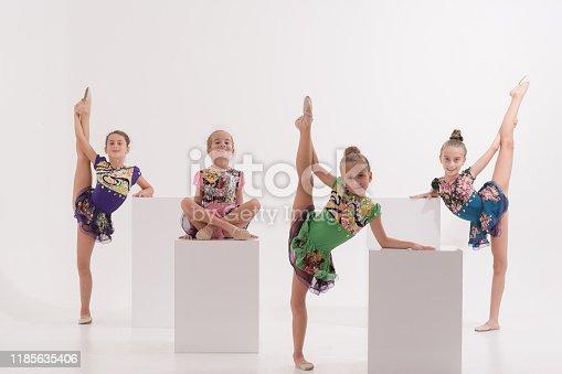 466300721 istock photo Group of Little ballerinas performer in dance studio 1185635406