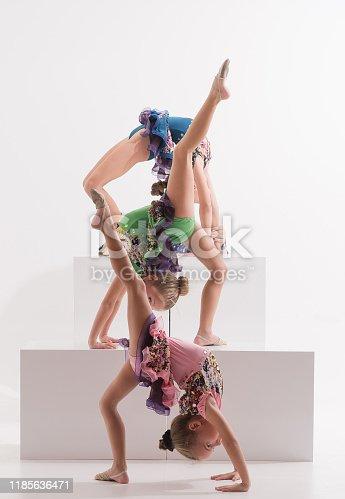 466300721 istock photo Group of Little ballerinas performer in dance studio 1185636471
