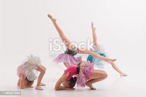 466300721 istock photo Group of Little ballerinas performer in dance studio 1185637555