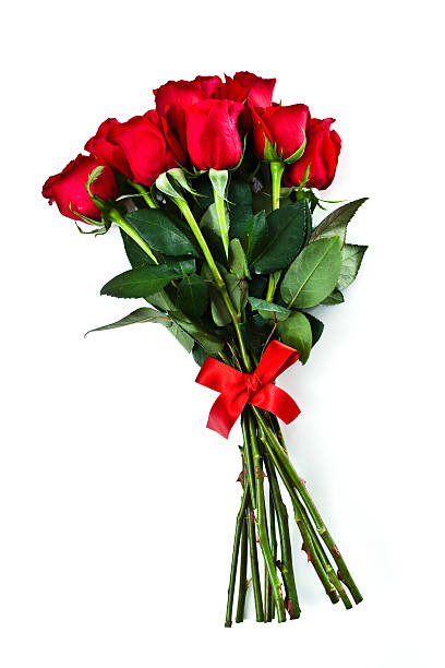 group of long stemmed roses with red bow for valentines day - bunch stock photos and pictures
