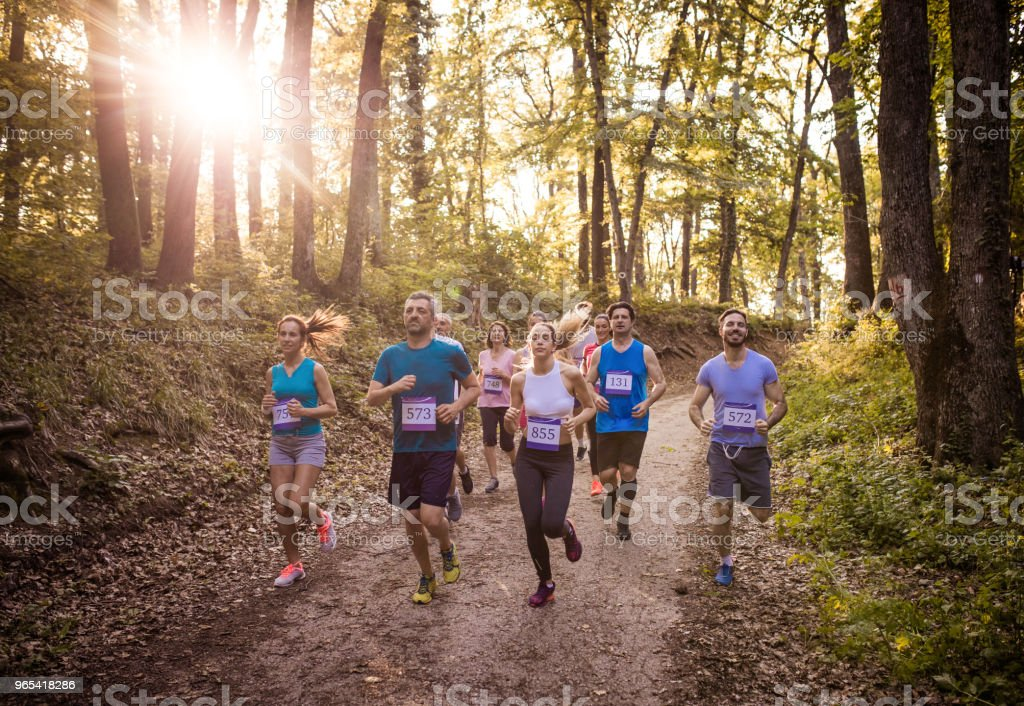 Group of marathon runners running on a path in the forest. royalty-free stock photo