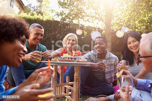 istock Group Of Mature Friends Enjoying Drinks In Backyard Together 643325076