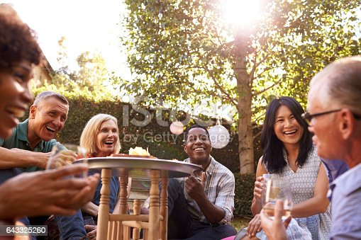 istock Group Of Mature Friends Enjoying Drinks In Backyard Together 643325260
