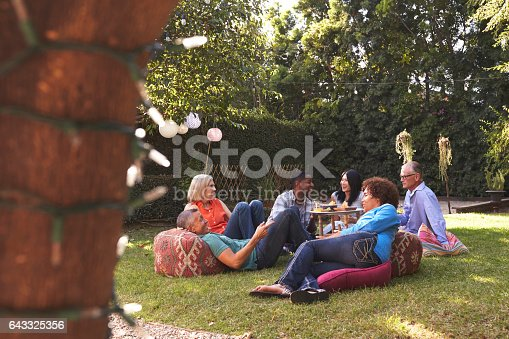 istock Group Of Mature Friends Enjoying Drinks In Backyard Together 643325356