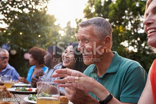 643325030 istock photo Group Of Mature Friends Enjoying Outdoor Meal In Backyard 643324720