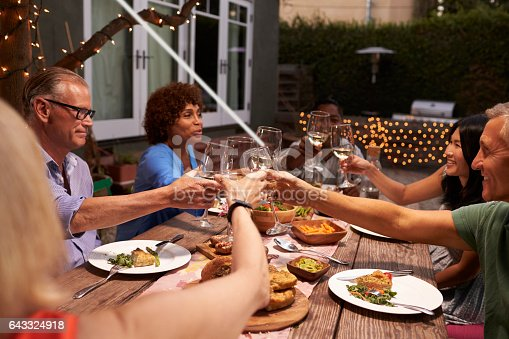 643325030 istock photo Group Of Mature Friends Enjoying Outdoor Meal In Backyard 643324918
