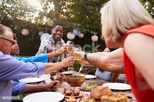 643325030 istock photo Group Of Mature Friends Enjoying Outdoor Meal In Backyard 643325320