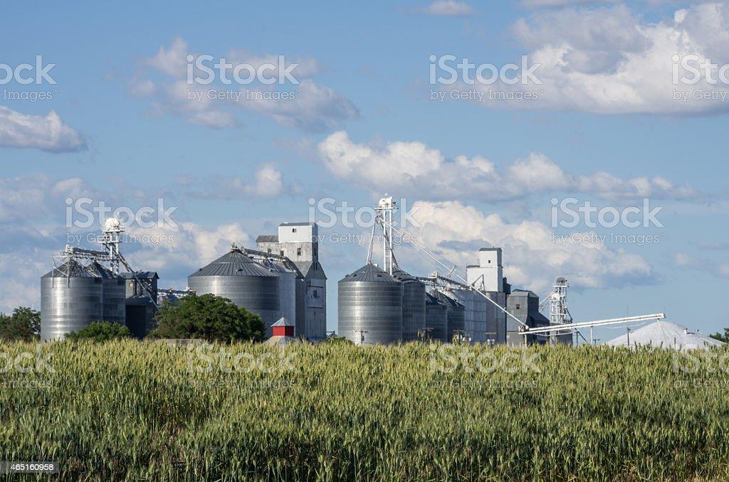 Group of metal grain silos stock photo