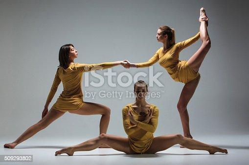 511309540 istock photo Group of modern ballet dancers 509293802