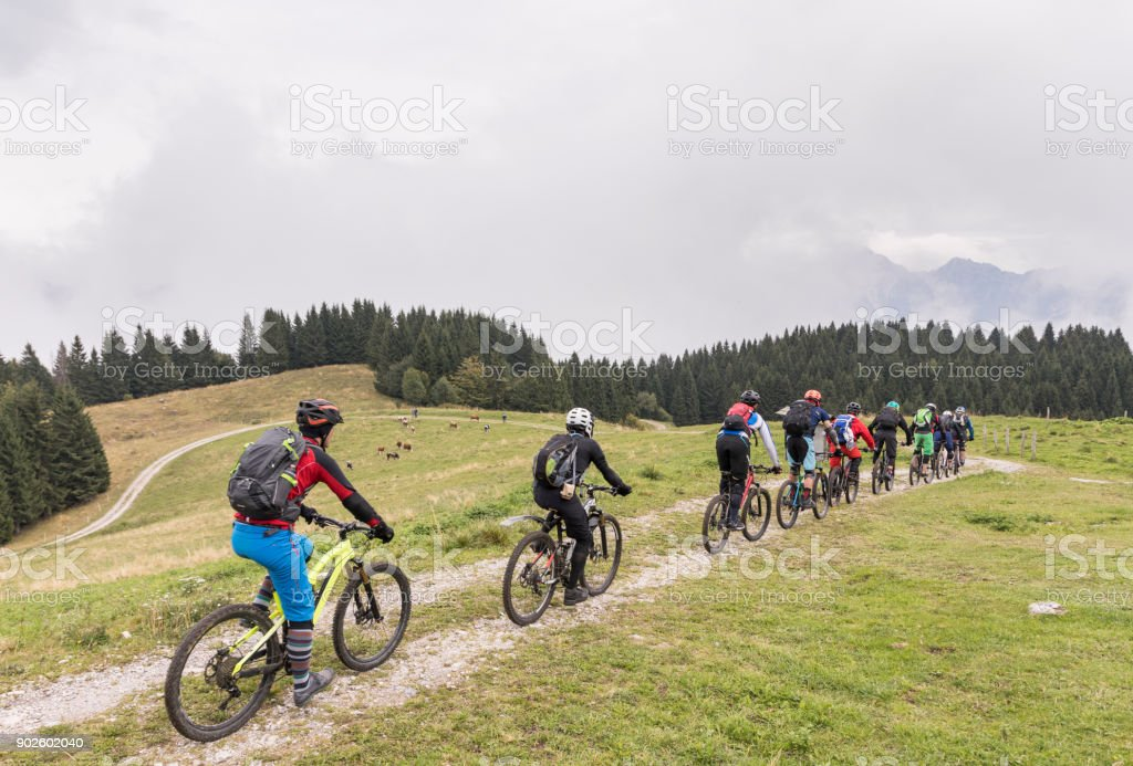 Group of mountainbikers is crossing a pasture area in the Friulian Mountains, Italy. stock photo