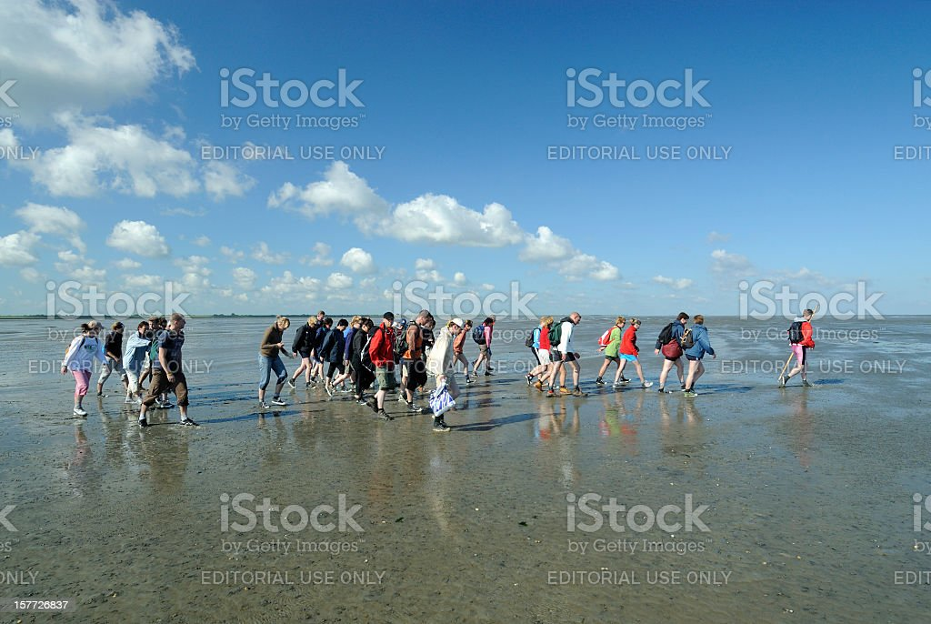 Group of mud flat hikers in the Netherlands stock photo