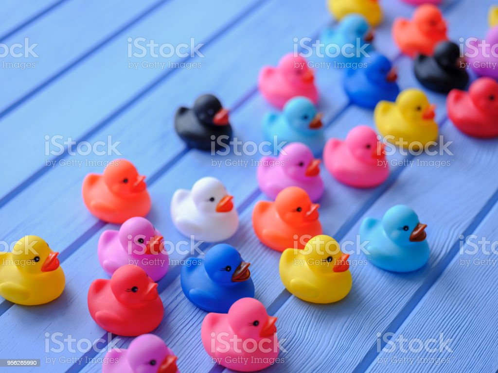 Group of multi-color rubber ducks, moving forward together, set on a blue wooden grained table. stock photo
