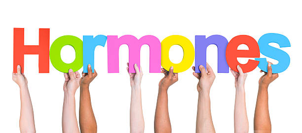 Group of Multiethnic Hands Holding Word Hormones stock photo