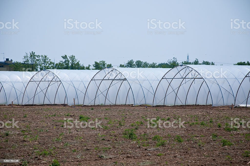 group of new greenhouses that serve to make the vegetables royalty-free stock photo