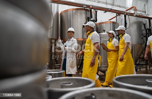 istock Group of new operators in training at a brewery factory 1206641680