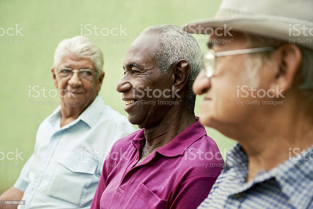 Group of old friends enjoying a day in the park stock photo