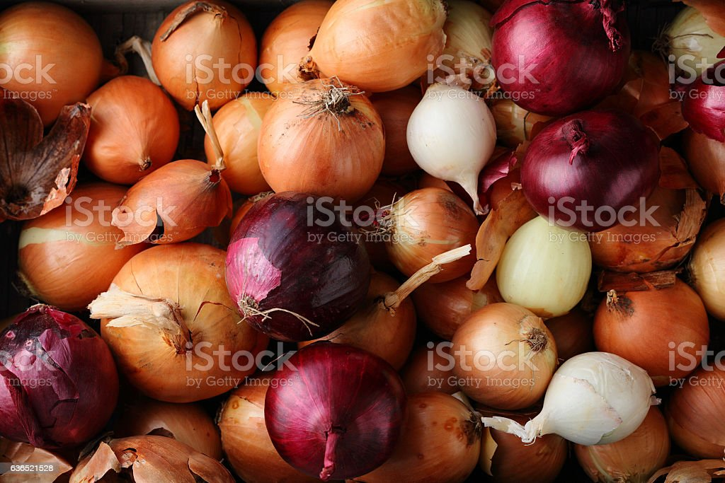 Group of onions top view stock photo