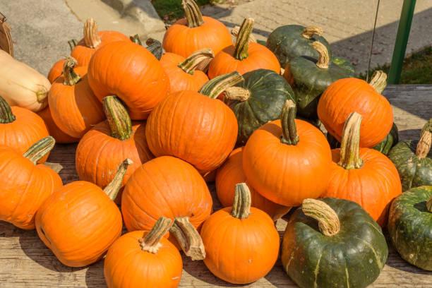 group of orange and green cooking pumpkins at farmers market - pumpkin pie стоковые фото и изображения
