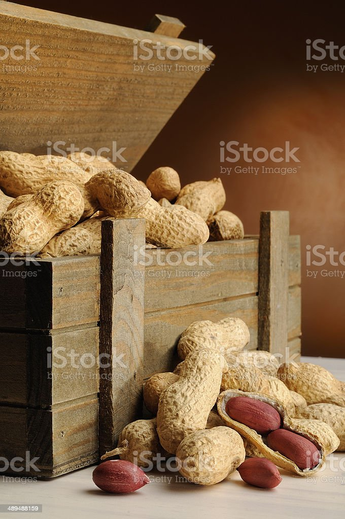 group of peanuts on with trunk wooden container vertical composi royalty-free stock photo