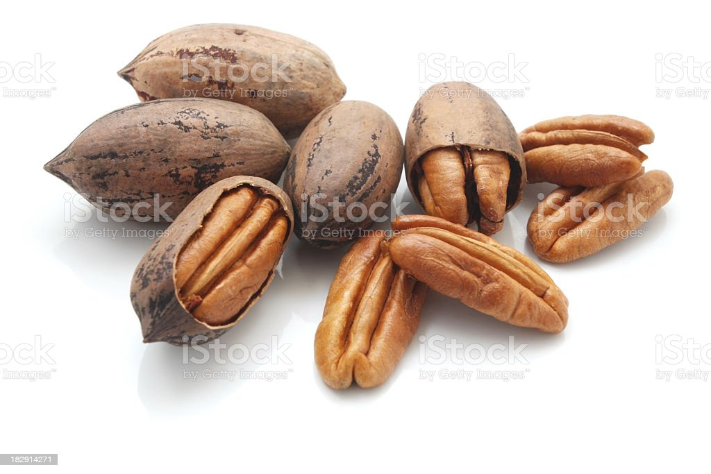 A group of pecan nuts on a white background stock photo