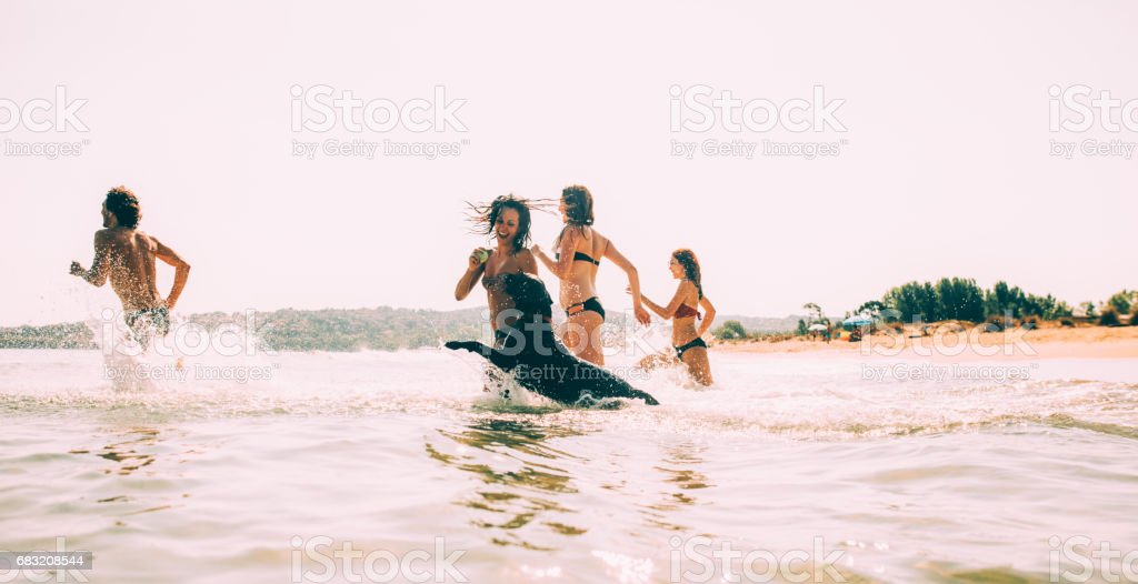 Group of people and a dog swimming in the sea royalty-free stock photo