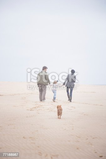 135384905 istock photo A group of people at the beach 77188987